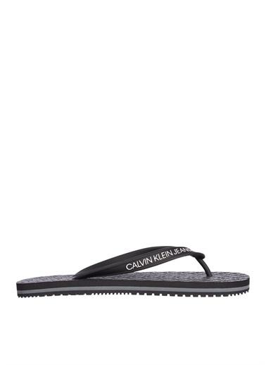 Calvin Klein Calvin Klein Plaj Terliği Siyah